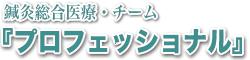 鍼灸総合医療・チーム『プロフェッショナル』
